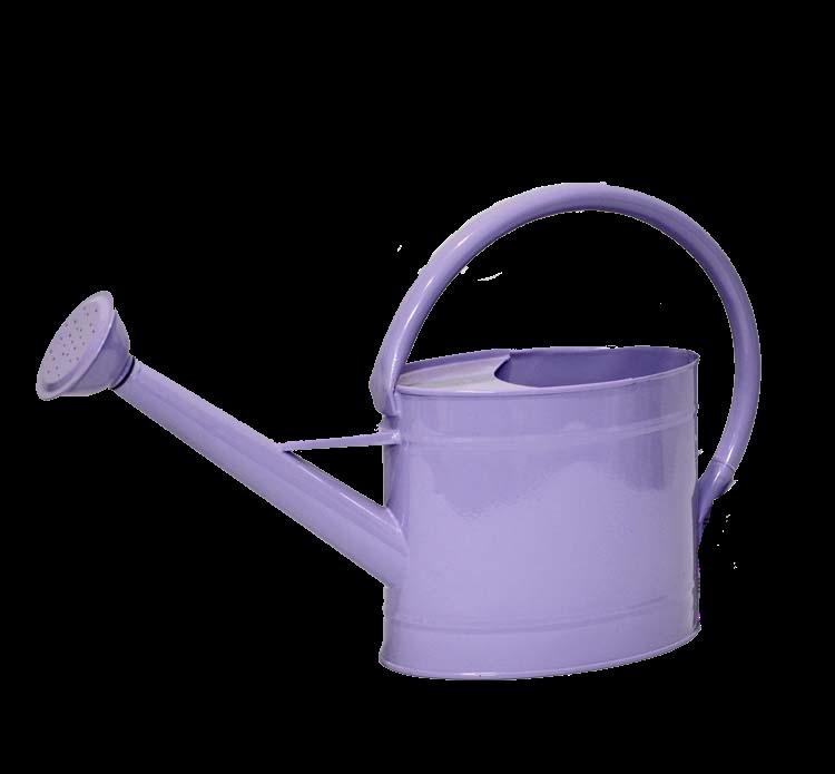 Annaffiatoio metallo colorato ( ZINC WATERING CAN)